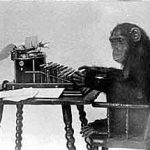 The monkey! He's typing!