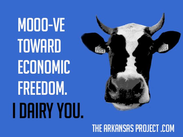 cow EF