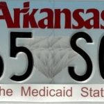 Medicaid state