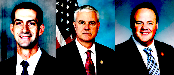 Rumored potential Pryor challengers Cotton, Womack, Darr (left to right)