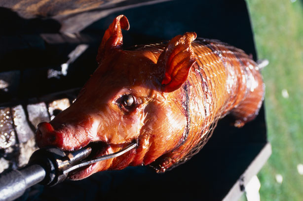 esq-pig-roast-072211-xlg