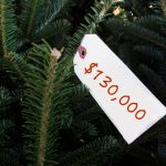 Conway Xmas tree price tag