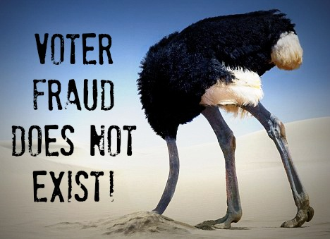 VOTE-FRAUD.jpg