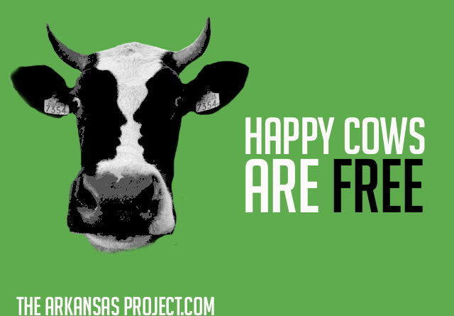 happy-cows.png