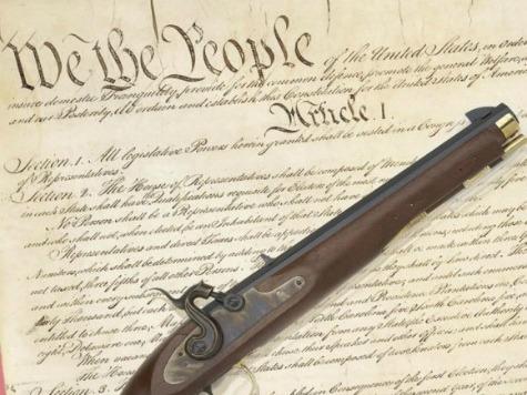 constitution_gun.jpg
