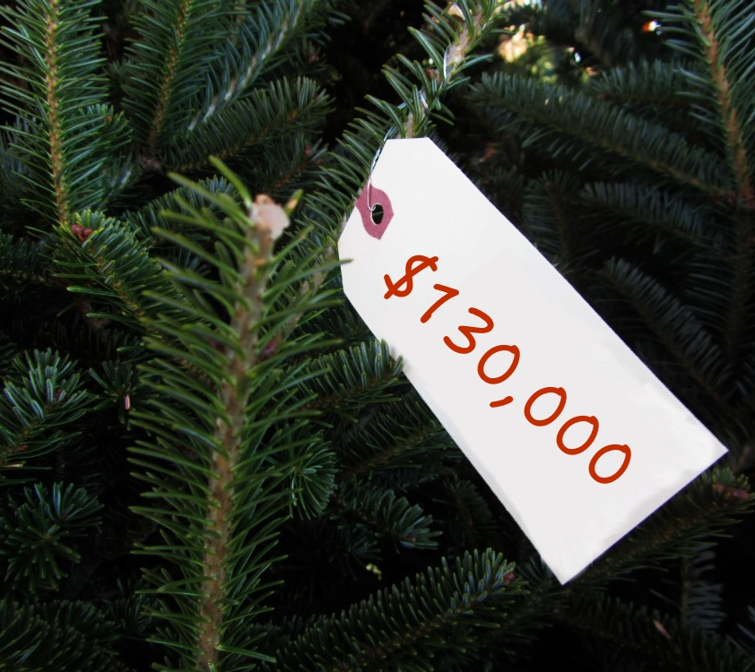 Christmas Tree Done: How Government Should Do Stuff With Christmas Trees