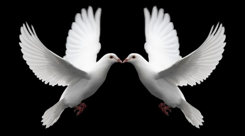 Pair_of_White_Doves_Symbolize_Love.jpg