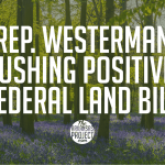 Rep. Westerman Pushing Positive Federal Land Bill