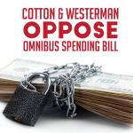 Cotton, Westerman Oppose Omnibus Spending Bill