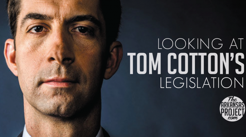 tom-cotton-leg-01.png
